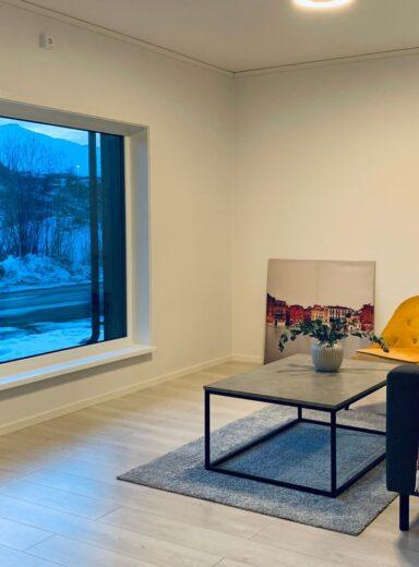 Boliger-livingroom